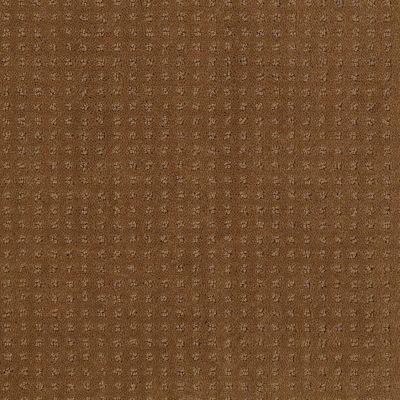Shaw Floors SFA Loyal Beauty Pattern Country Wheat 00701_EA183