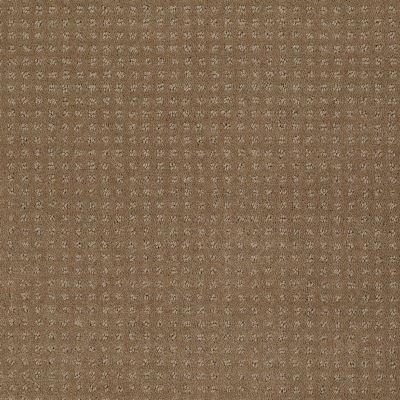 Shaw Floors SFA Loyal Beauty Pattern Twig 00702_EA183