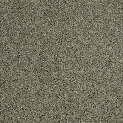 Shaw Floors SFA Source Silver Sage 00310_EA496