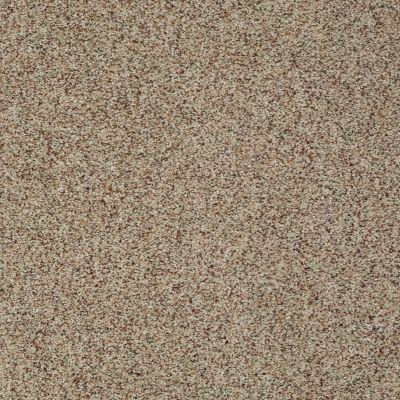 Shaw Floors SFA Fundamentals (a) Ancient Marble 00138_EA498