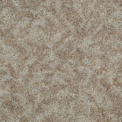Shaw Floors SFA Starting Place Misty Glen 00102_EA499