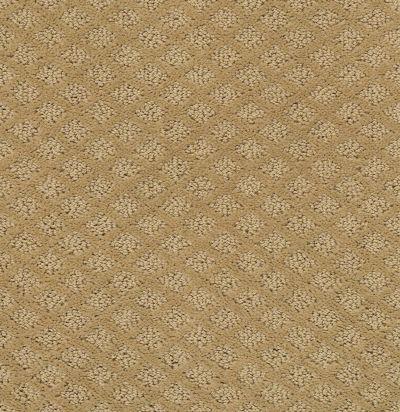 Shaw Floors SFA Excel Natural Wood 00701_EA502