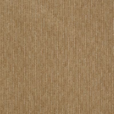 Shaw Floors SFA Speed Zone Natural Wood 00701_EA503