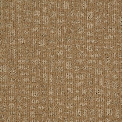 Shaw Floors SFA Right Away Natural Wood 00701_EA505