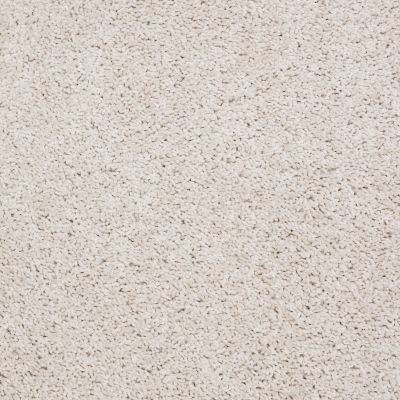 Shaw Floors SFA O'donnell Fine Lace 00100_EA510
