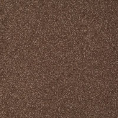 Shaw Floors SFA Shingle Creek II 15 Wooden Box 00721_EA515