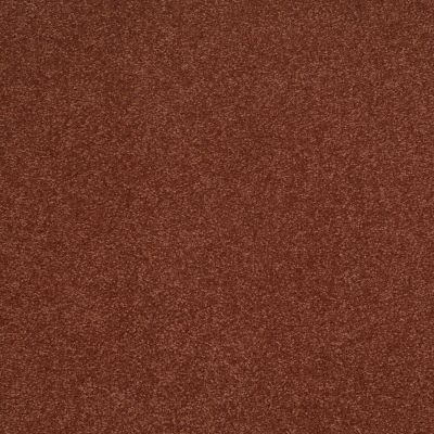 Shaw Floors SFA Shingle Creek III 12′ Spanish Tile 00601_EA516