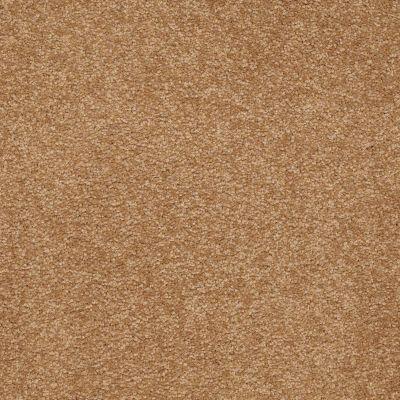 Shaw Floors SFA Shingle Creek III 12′ Peanut Brittle 00702_EA516