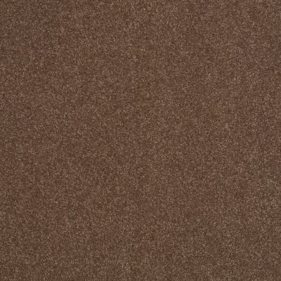 Shaw Floors SFA Shingle Creek III 12′ Wooden Box 00721_EA516