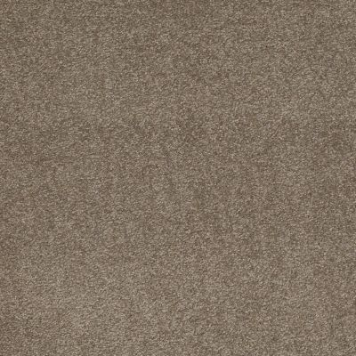 Shaw Floors SFA Shingle Creek Iv 12′ Wood Smoke 00520_EA518