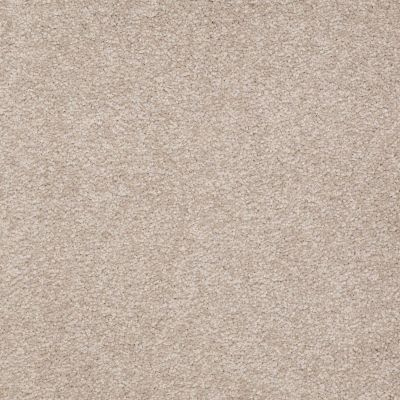 Shaw Floors SFA Shingle Creek Iv 15′ Soft Shadow 00105_EA519