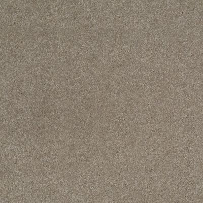 Shaw Floors SFA Shingle Creek Iv 15′ Wood Smoke 00520_EA519