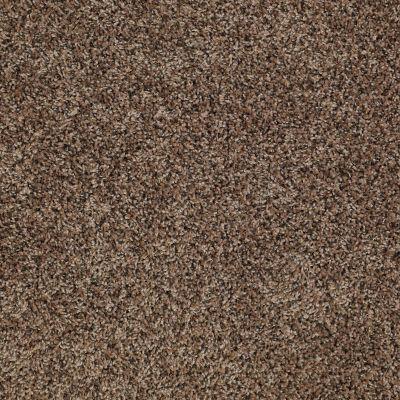 Shaw Floors SFA Rendezvous (t) Kodiak Bear 00741_EA527