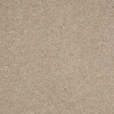 Shaw Floors SFA Turn The Page I 15′ Sandy Nook 00104_EA528