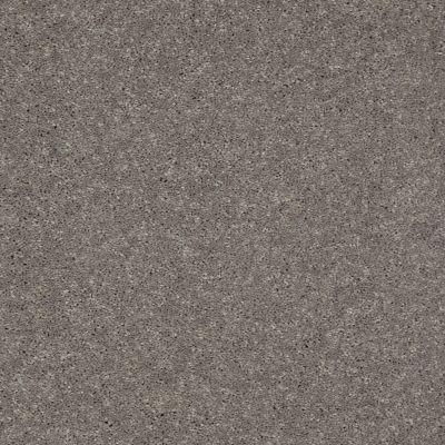 Shaw Floors SFA Turn The Page I 15′ Thunder 00503_EA528