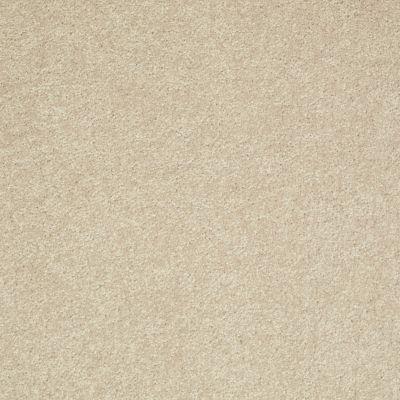 Shaw Floors SFA Turn The Page II 15′ Agate 00102_EA529