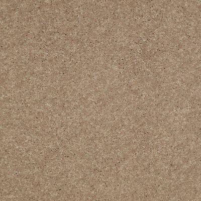 Shaw Floors SFA Turn The Page II 15′ Honeycomb 00200_EA529