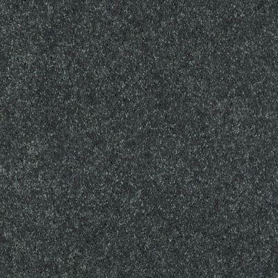 Shaw Floors SFA Turn The Page II 15′ Aspen 00302_EA529