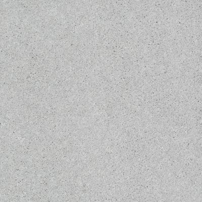 Shaw Floors SFA Turn The Page II 15′ Sheer Silver 00500_EA529