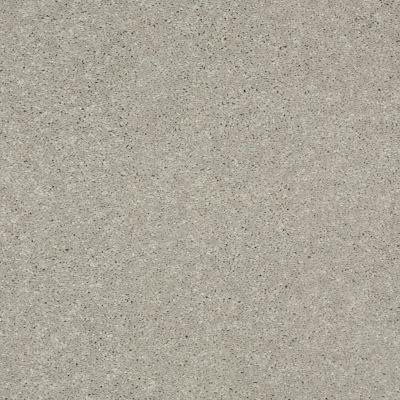 Shaw Floors SFA Turn The Page II 15′ Dove Tail 00501_EA529
