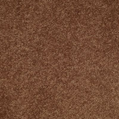 Shaw Floors SFA Turn The Page II 15′ Pottery 00600_EA529