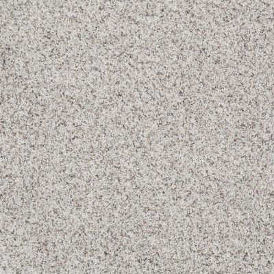 Shaw Floors SFA Our Home III Snowcap 00179_EA557