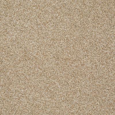 Shaw Floors SFA Totally Convinced Taffeta 00107_EA558