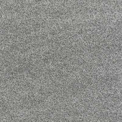 Shaw Floors SFA Totally Convinced Silver Sage 00350_EA558