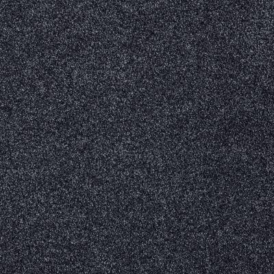 Shaw Floors SFA Totally Convinced Indigo 00451_EA558