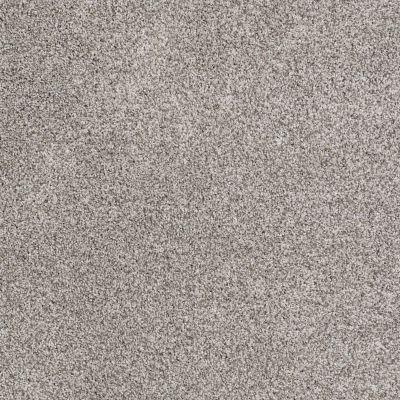 Shaw Floors SFA Totally Convinced Ash 00550_EA558