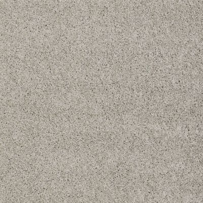 Shaw Floors SFA My Inspiration I Glaze 00154_EA559