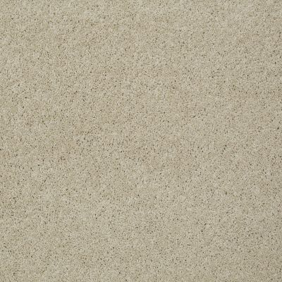 Shaw Floors SFA My Inspiration II French Linen 00103_EA560