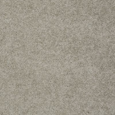 Shaw Floors SFA My Inspiration II Natural 00153_EA560