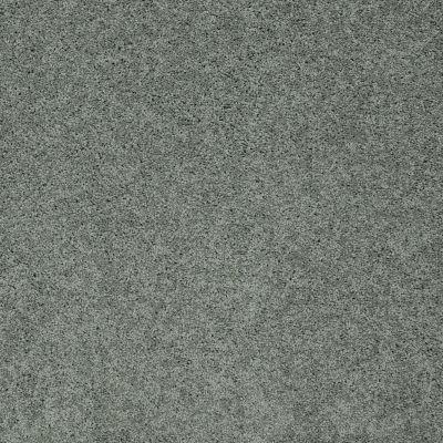 Shaw Floors SFA My Inspiration II Silver Sage 00350_EA560