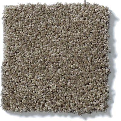 Shaw Floors SFA My Inspiration II Flax 00751_EA560