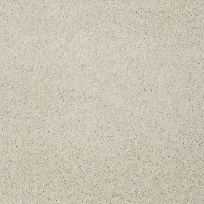 Shaw Floors SFA My Inspiration III China Pearl 00100_EA561