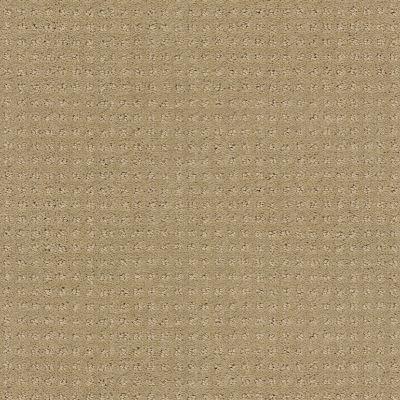 Shaw Floors SFA My Inspiration Pattern Clay Stone 00108_EA562