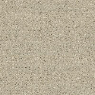 Shaw Floors SFA My Inspiration Pattern Textured Canvas 00150_EA562