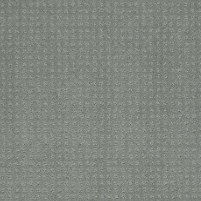 Shaw Floors SFA My Inspiration Pattern Silver Sage 00350_EA562