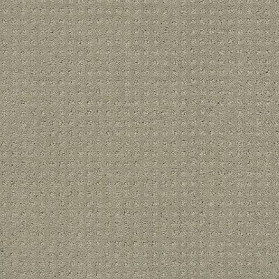 Shaw Floors SFA My Inspiration Pattern Ash 00550_EA562