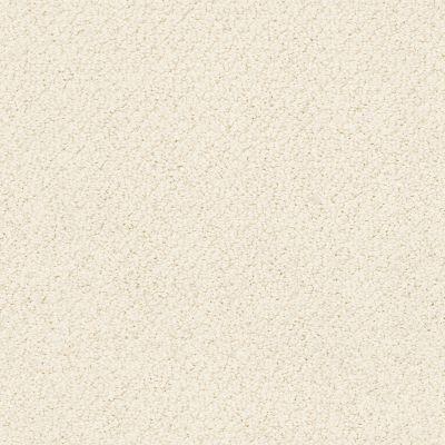 Shaw Floors SFA Artist View Loop China Pearl 00100_EA566