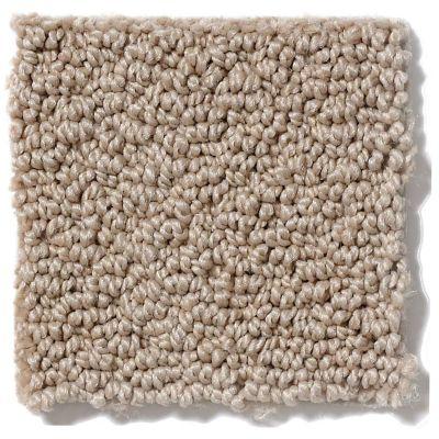 Shaw Floors SFA Artist View Loop Clay Stone 00108_EA566
