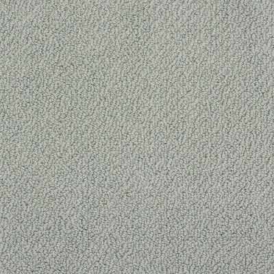 Shaw Floors SFA Artist View Loop Silver Sage 00350_EA566