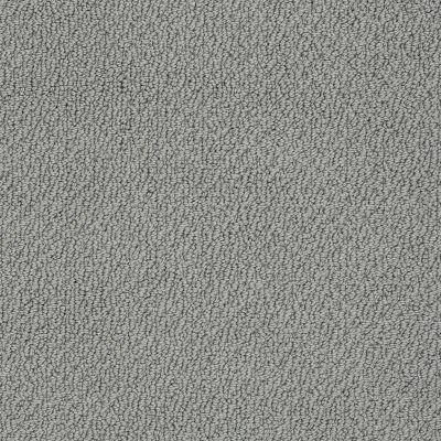Shaw Floors SFA Artist View Loop Charcoal 00551_EA566