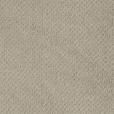 Shaw Floors SFA Artist View Loop Smooth Slate 00704_EA566