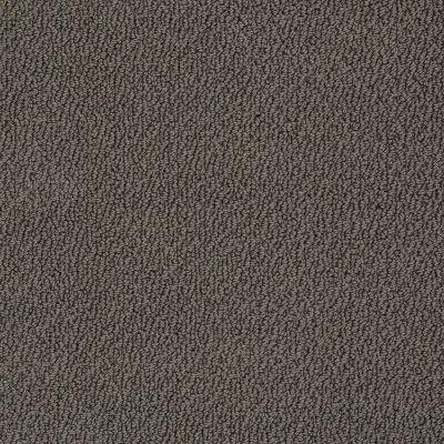 Shaw Floors SFA Artist View Loop Vintage Leather 00755_EA566