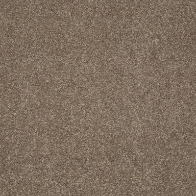 Shaw Floors Anso Colorwall Gold Texture Iced Coffee 00723_EA571
