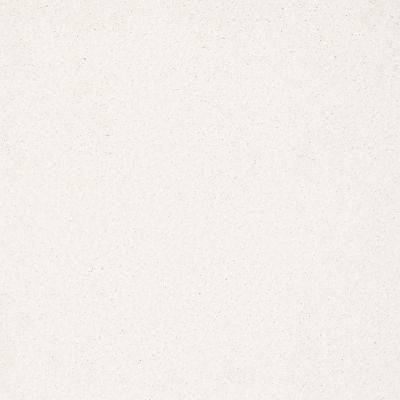 Shaw Floors Anso Colorwall Platinum Texture 12′ Snow Cap 00122_EA572
