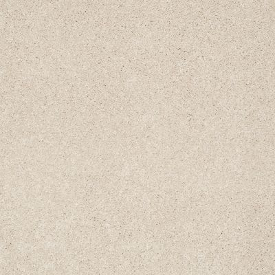 Shaw Floors Anso Colorwall Platinum Texture 12′ Dunes 00123_EA572