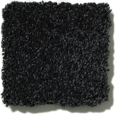 Shaw Floors Anso Colorwall Platinum Texture 12′ English Royal Navy 00433_EA572